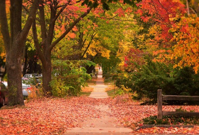 autumn in madison wisconsin